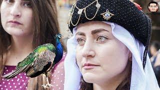 من هم الايزيديون ولمادا يعبدون طائر الطاووس