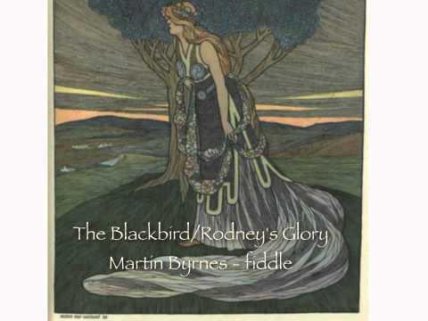 Máirtín Byrnes - the Blackbird/Rodney's Glory - setdances