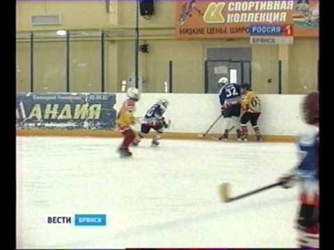Юные брянские хоккеисты стартовали