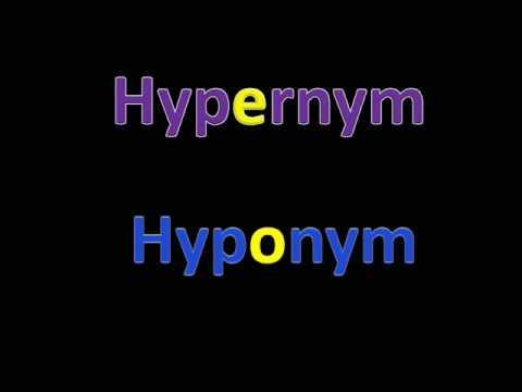 Hyponymy_Joanne Tay n Co.