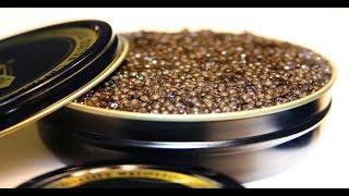 How to raise Russian caviar, NC-style