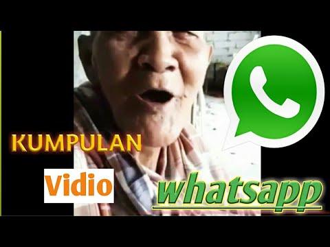 Download 9400 Gambar Lucu Buat Wa Grup Paling Lucu