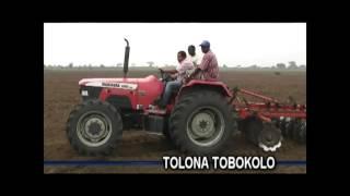 Tolona Tobokola sur le CAPFOR de General Trading Company (Huile de palme, Maïs), Brazzaville Congo