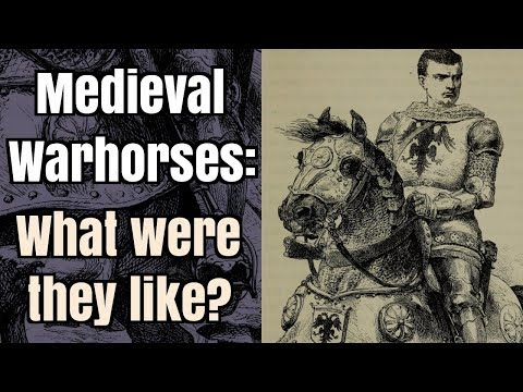 Medieval Warhorses - What were they like?