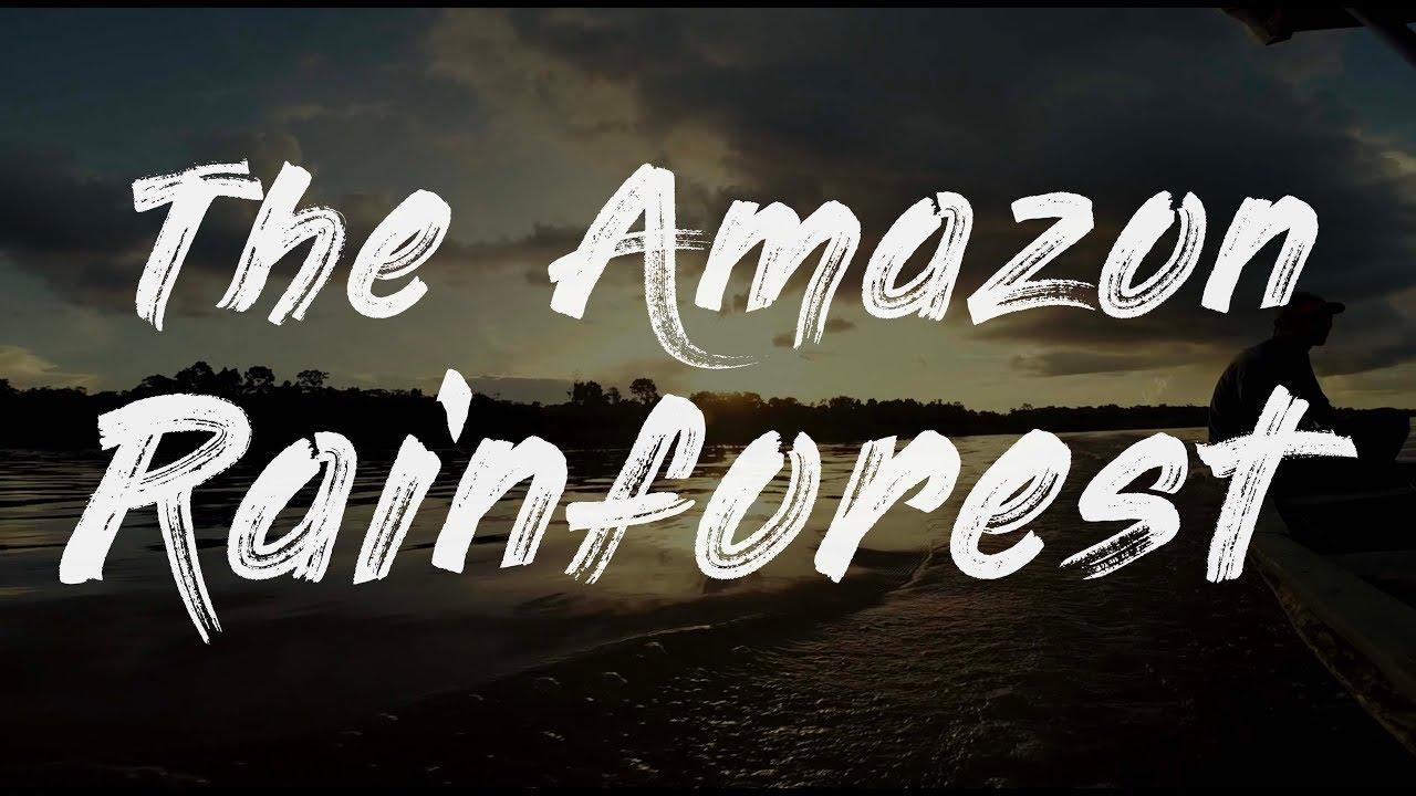 The Amazon Rainforest - GoPro