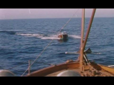 Dangerous Charter (1962) crime film