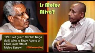 sebhat nega on fate of meles zenawi