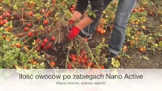 Nano Active tomotaoes/pomidory