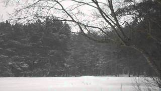 Relaxing nature scenes & chinese instrumental music - In The Forest In Winter Season [Part XIII]