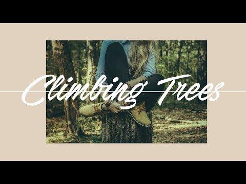 Climbing Trees - November 13th, 2016