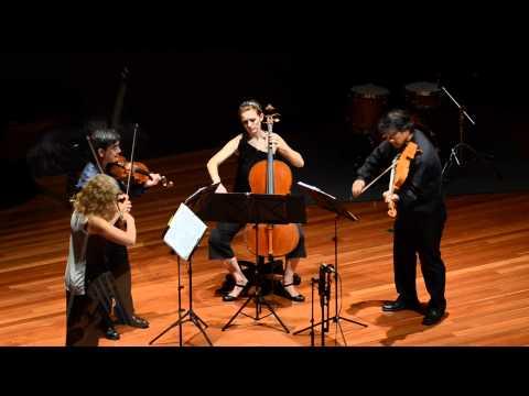 Chamber Music Day 2011