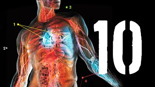 10 faktów, których nie wiesz o swoim ciele [TOPOWA DYCHA]