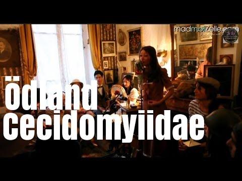 Ödland - Cecidomyiidae (concert privé)