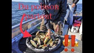 pêche du carnassier sur les Grands Lacs Landais avec Florent Surot