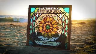 """This Wild Life - """"Figure It Out"""" (Full Album Stream)"""