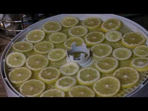 How to Dehydrate Lemons and Citrus Fruit