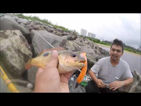 Rock fishing at Miri Marina Bay