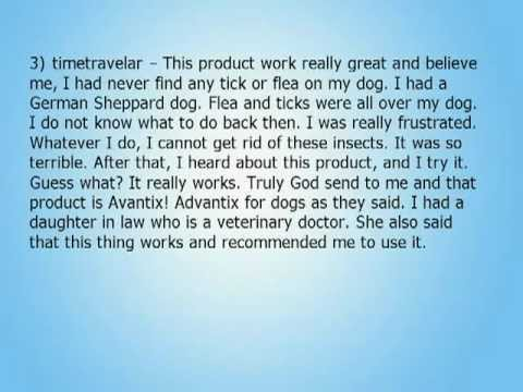 Advantix For Dogs Reviews Revealed