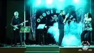 Grup Musical Orgue de Gats 2015