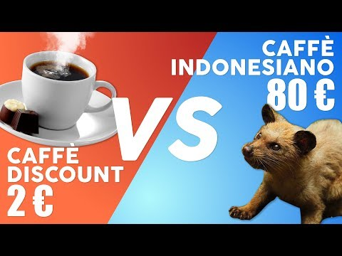 CAFFÈ DA 2 vs € CAFFÈ DA 80 € (Kopi Luwak) | Cos'è meglio?