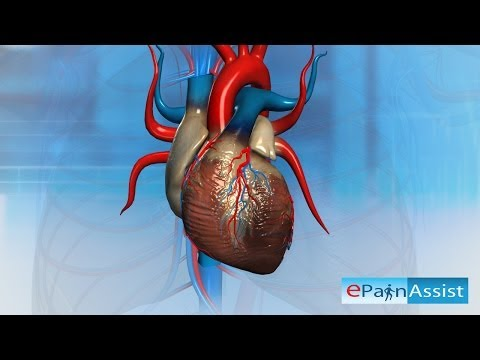 Heart Attack-What Can Cause a Heart To Stop Beating?