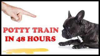 How to Potty Train your puppy or dog easily in 48 hours - Simple 3 steps.
