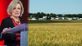 Sheila Gunn Reid reports Brazeau County, in South Central Alberta h...
