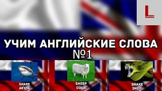 Учим английские слова. Урок №1. Тема: животные.