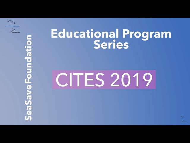 Post Conference Reflections - CITES 2019