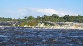 Essequibo River