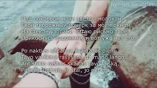 [lyrics] Elvin Grey ft. Интонация - Засыпай Зима [LIETUVIŠKAI!]