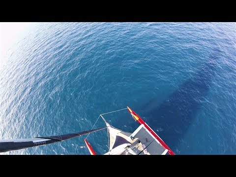 more-speed,-more-impact:-delivery-of-a-racing-trimaran-goes-wrong---ep55---the-sailing-frenchman
