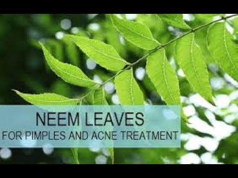 How to get rid of pimples in 1 day by using neem face mask