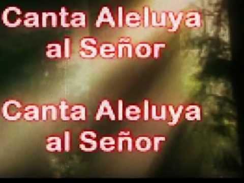 Canta Aleluya (Musica Cristiana)