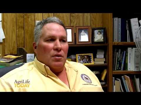 Farm Loans in South Texas