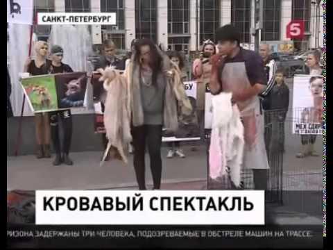 Место происшествия - В Санкт Петербурге прошел кровавый перфоманс