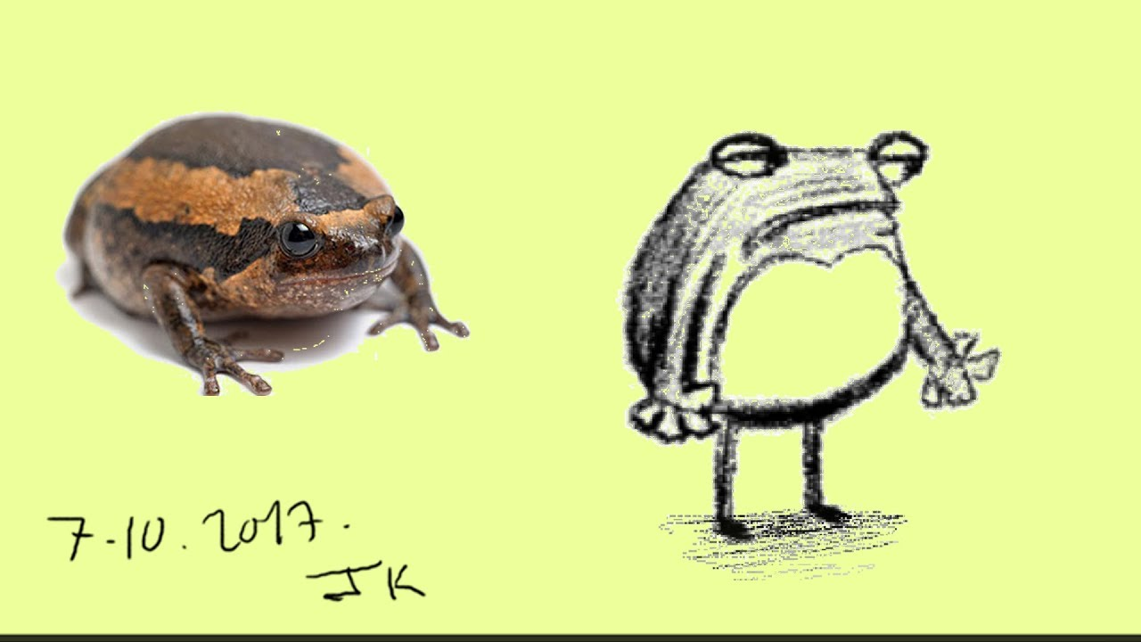 How to draw frog cartoon design simple # 2 on TVPaint An ...