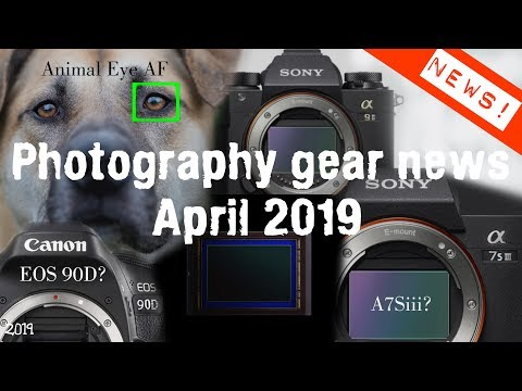 Camera News April 2019 - Sony A9ii? Canon 90d? A7Siii?