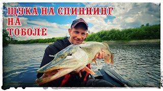 Щука на реке Тобол Трудовая рыбалка да еще и дождь выгнал с реки