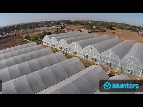 Munters solutions in Pico Grow, South Africa