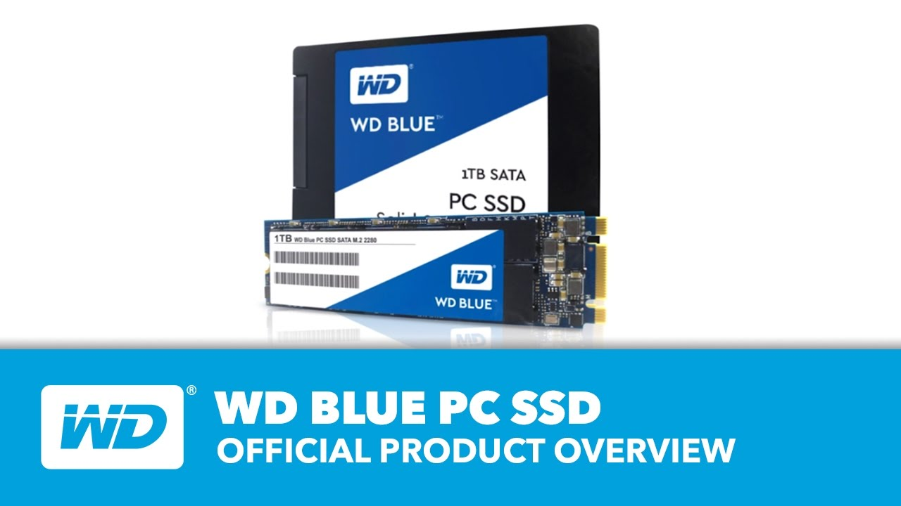 WD Blue SSD | Official Product Overview