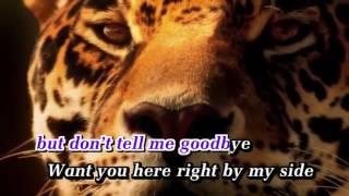 Chris Le - Where Are You Now (Karaoke)