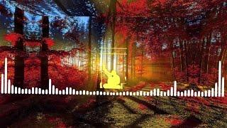 Nusrat Fateh Ali Khan - Mere Rashk-e-Qamar Remix | NFAK | Lyrics In Description