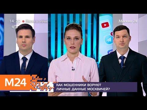 """""""Прямо и сейчас"""": как мошенники воруют личные данные москвичей - Москва 24"""