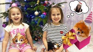 Дети раскрыли секрет и нашли Sweet Pups  Алина и Юляшка идут на Алису