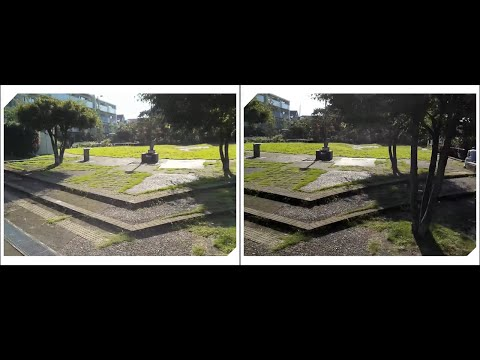 Stereoscopic video test (cross-eye)