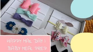 HAPPY MAIL DAY | BABY MEAL PREP