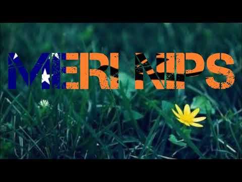 Tasik Yard (Wild Pack) - Meri Nips (ft Hotwills) (Prod. by Snookz)