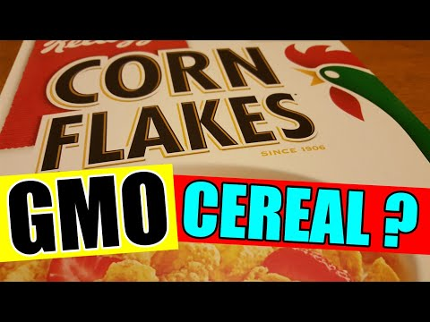 ARE CORN FLAKES GMO? I called KELLOGGS and THIS is what they said
