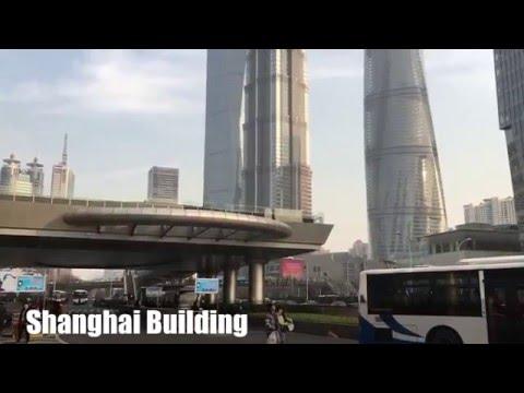 Shanghai Building(상하이빌딩과 동방명주탑)